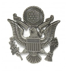 Odznaka - US Air Force Hat Insygnia - Odznaka na czapkę - Srebrna