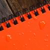 "Rite in the Rain - Notes wodoodporny - 4 x 6"" - OR46 - Intensywny Pomarańczowy"